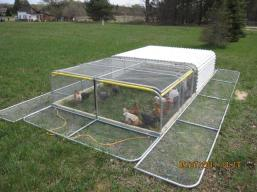 A Protected Chicken Tractor specially for areas with High Predation (Predator) Rates